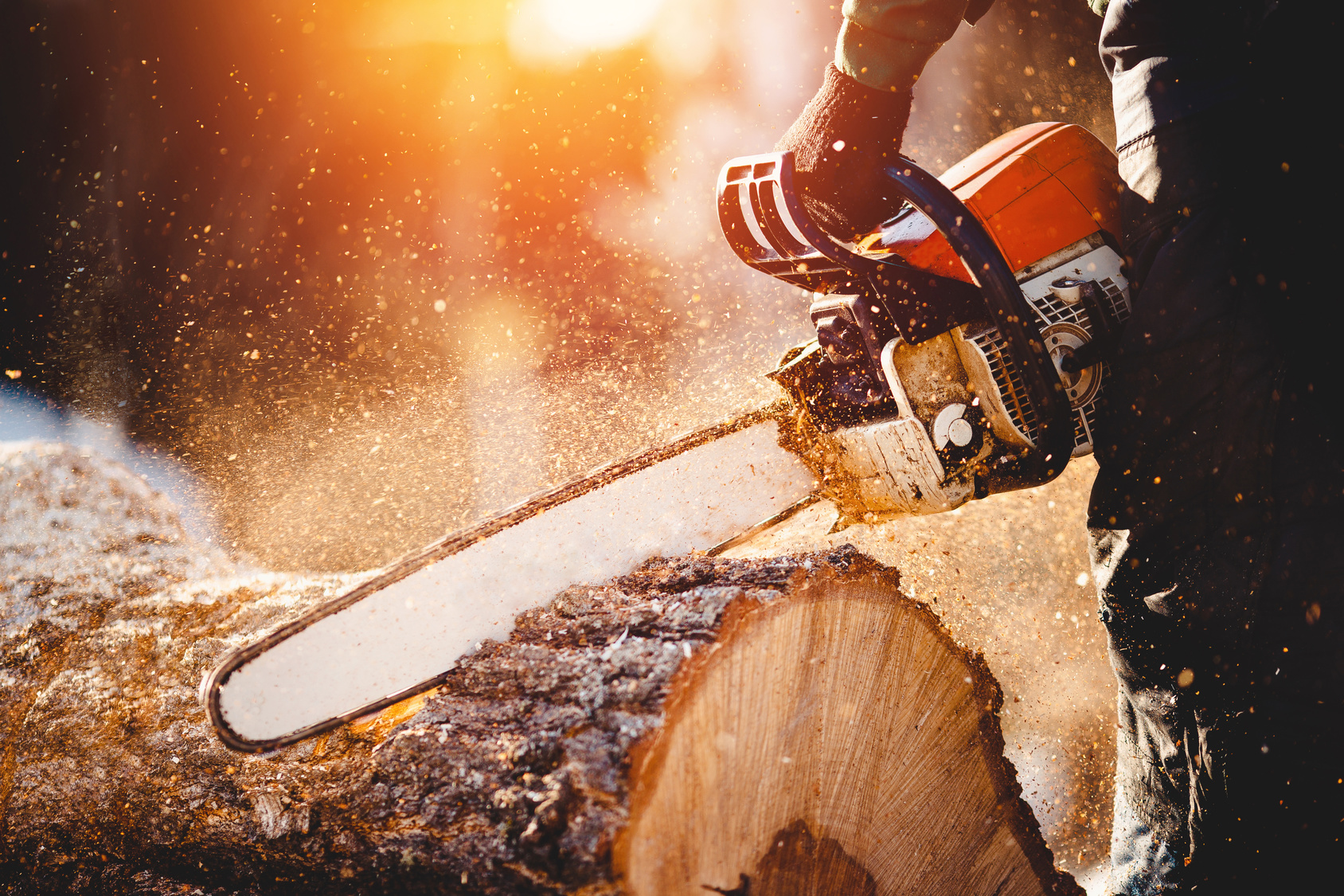 The Best Electric Chainsaws In 2019 - Detailed Buyer's Guide