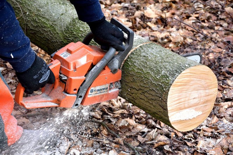 guy cutting a big tree trunk with a chainsaw
